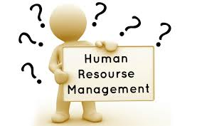 manage human resources